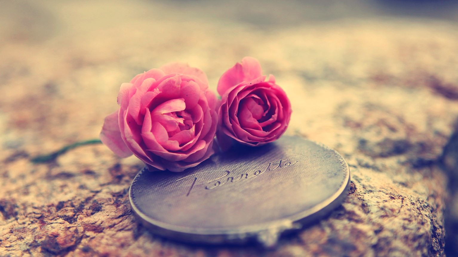 love-rose-wallpaper