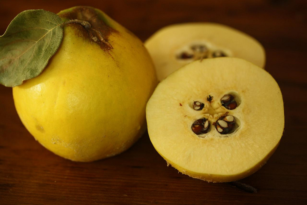 quince-real-natural-remedy-featured